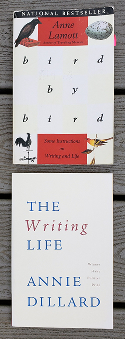 Two books:  Bird by Bird by Anne Lamott and The Writing Life by Annie Dillard